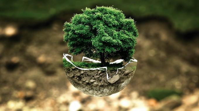 Environmental Protection 683437 1280